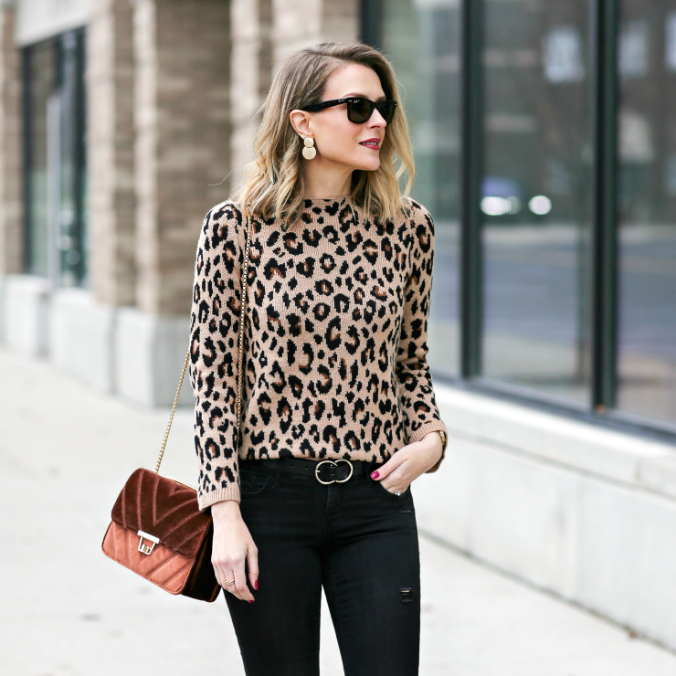 Ann Taylor Leopard Sweater