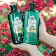 Herbal Essences Frizz Control Shampoo & Conditioner